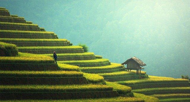 sejour en thailande