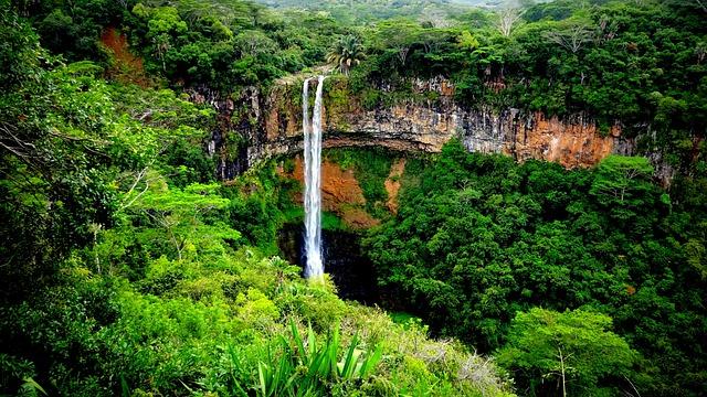 parc national des gorges de rivière noire